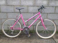 ladies pink bike townsend 26''