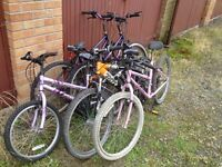 Bicycle job lot( 6 bikes)