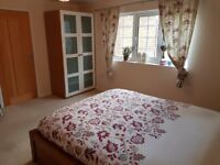 2/3 bedroom 3* Star Bunglow with 100 MB Internet and private garden and off road Parking
