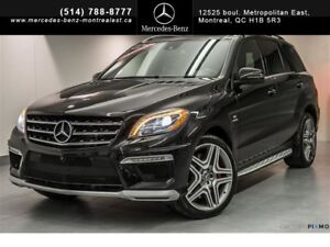 2014 Mercedes-Benz M-Class Performance