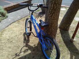 Boys bike.