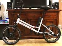 Coyote Energy electric bike