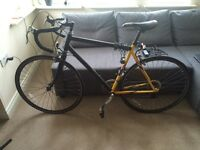 Race viking bike.