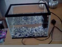 12l glass startrer tank woth pump/filter and gravel
