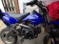 125cc pitbike airdrie