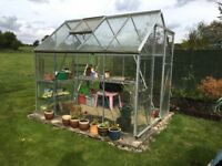 Free green house, must be dismantled