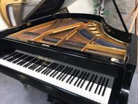1909 Bluthner Aliquot Gloss Black Grand Piano - CAN DELIVER