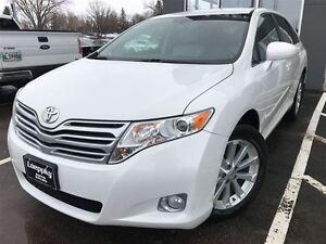 2009 Toyota Venza -