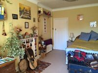 Beautiful, huge bedroom in communal houseshare available for couple