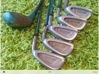 Ladies Golf Clubs R/H