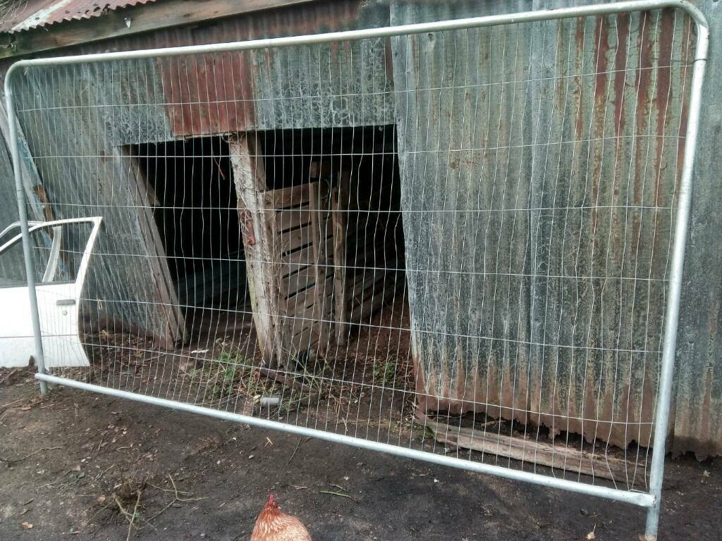 Heras fence panels , bit damaged ,about 30 left clacton on sea | in ...