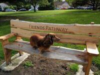 Go Walkies - dog walking EH9. Dog walker for Small/Medium Dogs.