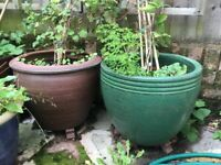 2 x Ceramic Large Flower Pots - Quality - Expensive New - Frostproof