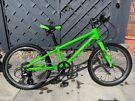 Giant Arx 20inch wheel kids bike
