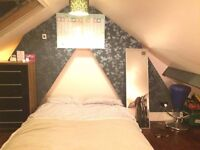 Lovely room 15 minutes from the centre of Exeter: Only £83ppw!