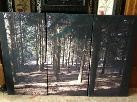 3 Piece Set Wall Canvas of a Woodland Scene
