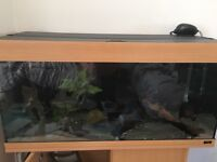 Jewel 180 fish tank and stand