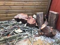 Free wood logs Harrow