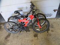 Kids / Boys / Girl Full Suspension Mountain Bike