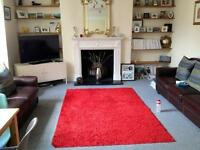 Lovely 2 bedroom flat off Clapham Common