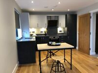 Reading town central, 1 bed flat to rent, fully furnished