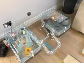 2 Large hamster cages that join