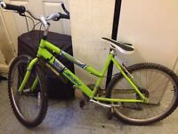 Adult Raleigh mountain bike 26 inch wheels