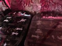 Black Or Red Mother Of Pearl Chinese/Oriental/Asian Dining Table With Chairs.
