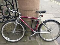 Carrera mountain bike in good condition