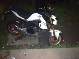 Honda grom MSX 125 2016 cheap bike learner legal cheap insurance