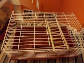 Guinea pig cage for sale selling as have just beought a bigger one