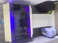 Fish tank with heater,pump,stones,ornaments