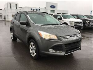 2014 Ford Escape SE - NAV, REAR CAM ...