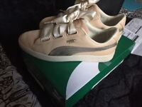 New puma trainers for sale...