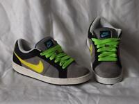Nike Skater Style Trainers