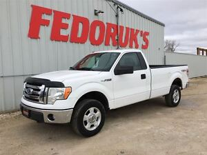 2009 Ford F-150 XLT Package***DETAILED AND READY TO GO***