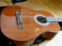 acoustic guitar electro acoustic inc gigbag