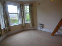 First Floor Room Unfurnished Bedsit in Richmond Park Road (Charminster) with Some Bills Included