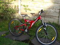 "Giant MTX girls/boys Mountain Bike 24"" Cycle Suspension Kids Childs Cyclechild bike Manchester"
