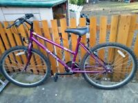 "Integra Phantom 26"" Ladies Purple Bike"
