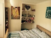 Double Room in Student House - Tenant needed ASAP