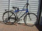 Torpado – Zona BLU 7 Speed Gents Bike.