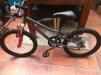 Boys Apollo Spider Mountain Bike