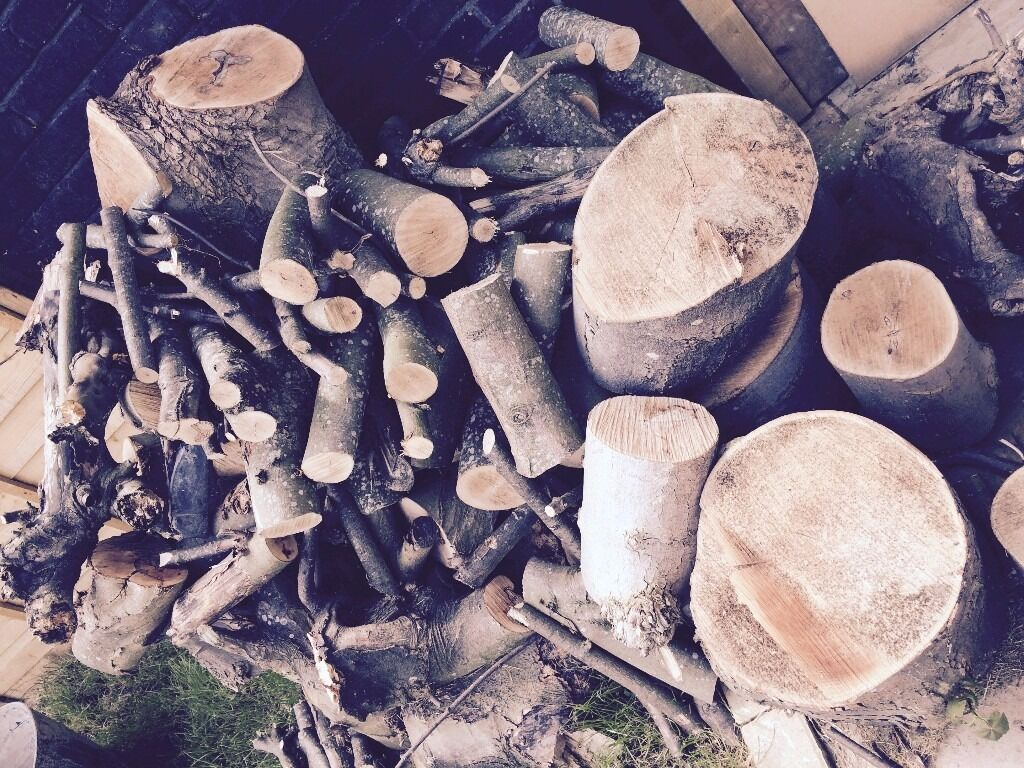 Firewood pile of maple tree logs and trunk cuts25in Crystal Palace, LondonGumtree - Firewood More than 1m2 pile of maple tree logs and trunk cuts, each piece ˜ 30 40cm. Sold for £25 to compensate for tools hire. Crystal Palace area