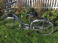 Trek T30 Womens Hybrid Bike