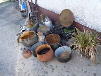 selection of pots and kettles