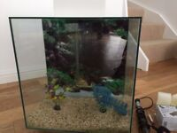 Fluval Edge Aquarium (Gloss White) - Includes many extras.