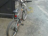 Bicycle raleigh