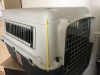 Animal/Pet Carrier for Sale