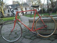 Pavyc 5speed Belgian Road Bike XXL 63cm/25'' Solid Steel Frame Fast Maillard Wheels Michelin Tyres